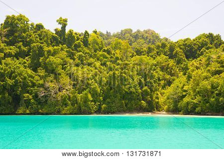 Idyllic Beach Along Wild Coastline With Tropical Forest, Indonesia
