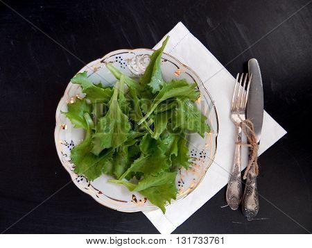 Fresh salad of lettuce is health pledge