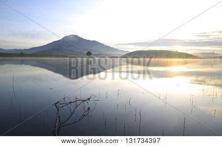 Alone tree in Dankia lake, Dalat, Vietnam