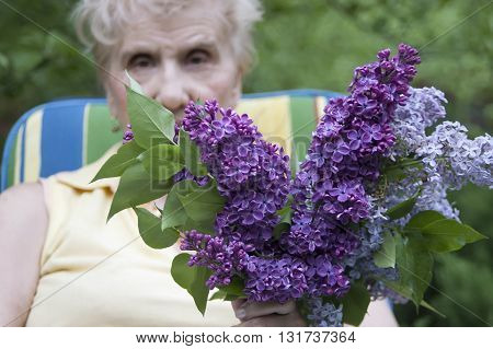Senior woman sitting in her garden with a bunch of lilac selective focus outdoor shot