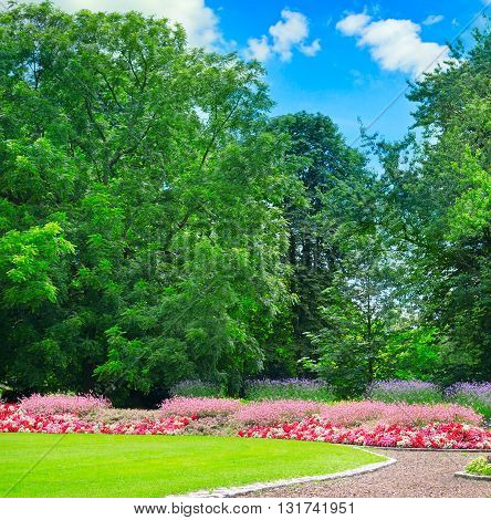 A summer park with beautiful flower beds