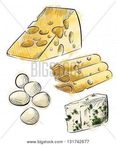 Cheese types. Delicious fresh cheese variet cheese making various types of cheese set of vector sketches mozzarella cheese Vector organic food illustration