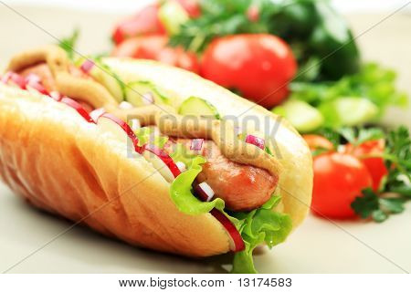 close up of Hot-Dog. Fast-Food. isolated over white Background.