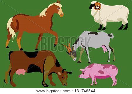 Farm animal. Flat vector illustration, horse,cow, pig, ets
