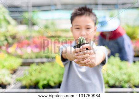 Boy Carry Cactus