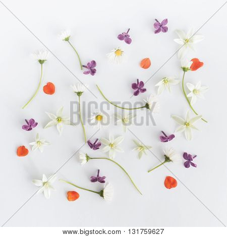 Colourful bright pattern made of flowers. Flat lay