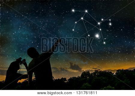 Leo Or Lion Constellation Of Zodiac On Night Sky. Astrology Conc