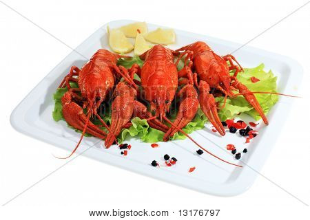 A dish with boiled crawfish, lemon and lettuce.