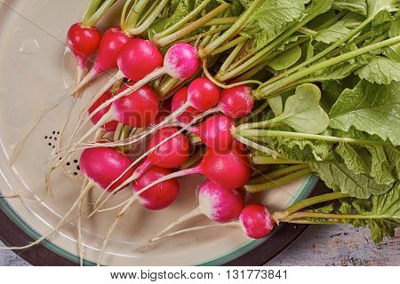 Fresh radish with leaves and water drops on plate.