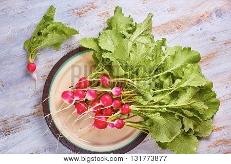 Fresh radish with leaves and water drops on plate. Vintage wooden background.
