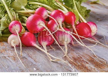 Fresh radish with leaves and water drops on vintage wooden background