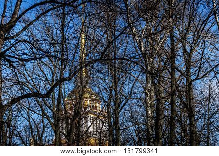 the building of the Admiralty in St. Petersburg behind trees