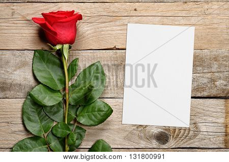 Red rose and greeting card on wooden background