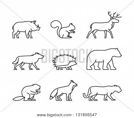 Cool line icons forest animals. Vector black symbols forest animals on a white background.