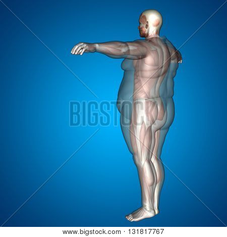 Concept, conceptual 3D illustration fat overweight vs slim fit diet with muscles young man blue background, metaphor weight loss, body, fitness, fatness, obesity, health, healthy, male, dieting, shape