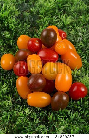 Selection Grade. Small Varieties Tomatoes On Green Grass