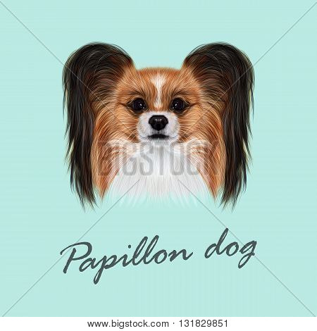 Vector Illustrated Portrait of Papillon dog. Cute fluffy face of Continental Toy Spaniel dog on blue background.