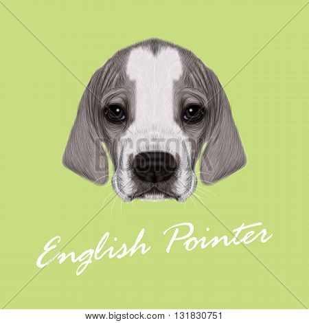 Vector Illustrated Portrait of English Pointer puppy. Cute bicolor short hair domestic dog on green background.