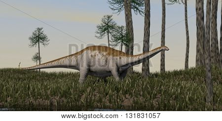 3d illustration of the apatosaurus walking on grass terrain