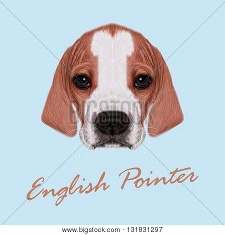Vector Illustrated Portrait of English Pointer puppy. Cute bicolor short hair domestic dog on blue background.