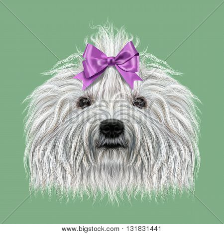 Illustrated Portrait of Puli dog. Cute curly white face of domestic dog on green background.