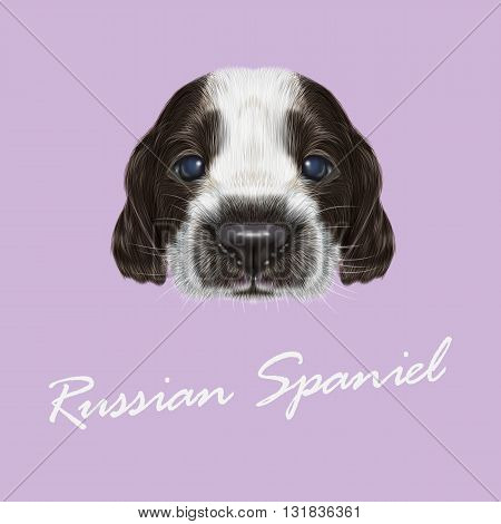 Vector Illustrated portrait of Russian Spaniel Puppy. Cute bicolor face of domestic puppy on violet background.