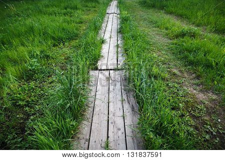 Gray wooden path in a green grass