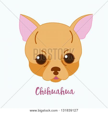 Vector dog Chihuahua icon flat design.Dog characters. Cartoon vector illustration handmade. Head dog. Icon with dog isolated on white background.