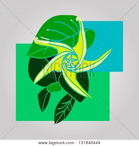 Simple picture of plant flower and green leaves. Flower with spiraled petals. Vector illustration on light background. Unusual icon