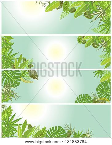 Tropical green backgrounds