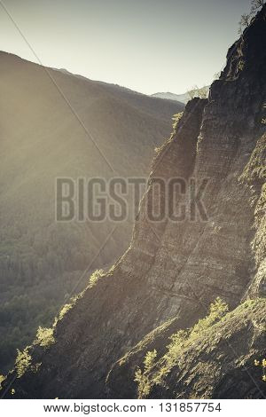 Mountain scenic landscape. The cliffs and forest in the morning at dawn lit by the sun.