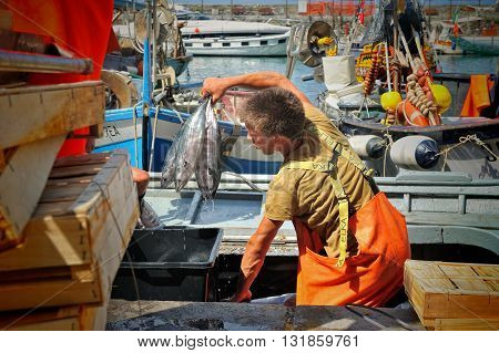 Camogli Liguria Italy - June 15 2015 Fishermans with a catch in Camogli port