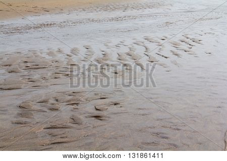 Close Up Of Wet Sand On The Beach