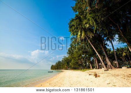 Tropical Landscape Of Koh Samui