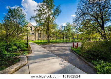 Walkways And Trees At The University Of Toronto, In Toronto, Ontario.