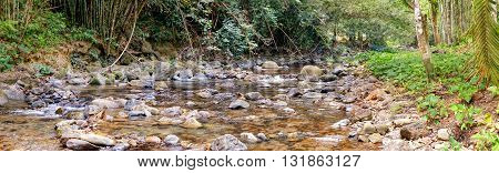 Panorama of Rainforest and Mountain stream at the Khao Sok National Park Surat Thani Province Thailand.