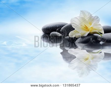 Spa stones with flower on water