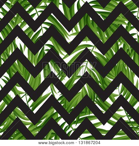 Tropical Palm leaves. Tropic palm. Tropical Palm leaf. Green tropic palm. Green palm summer tropical leaves. Tropic leaves frame.Green summer tropic palm leaves.
