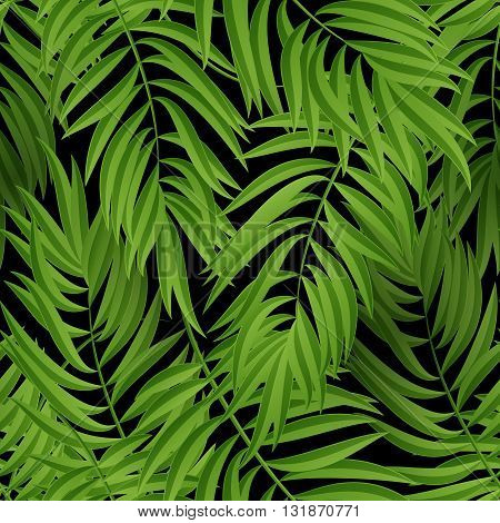 Tropical Palm leaves. Tropic palm. Tropical Palm leaf. Green tropic palm. Green palm summer tropical leaves. Tropic leaves frame.Green summer tropic palm leaves. Square frame.Square design tropic palm