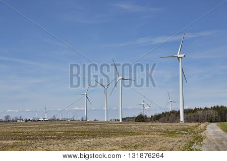 Electricity generating windmills working in the mid-day sun. The huge blades turn the generator located in the hub; creating electricity for the North American power grid.