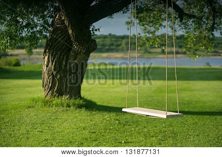 A homemade swing, no decor, mounted on old willow tree. Beautiful summer weather in the background of the lake.