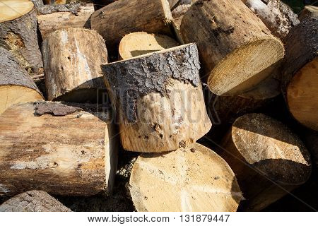 Felled tree trunks in a pile. Logs are a bunch at the ranch. Background and texture of wood. Logging in the village.