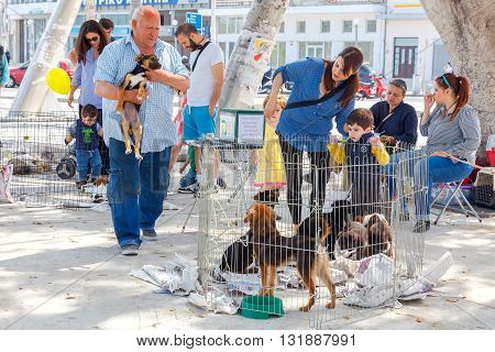 Heraklion, Greece - April 24, 2016: Charity event to help the homeless dogs in the central square of Heraklion.