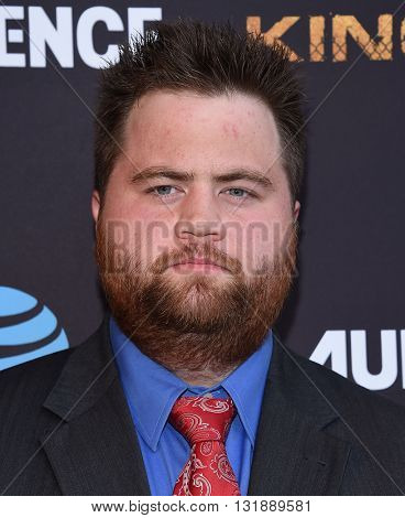 LOS ANGELES - MAY 25:  Paul Walter Hauser arrives to the