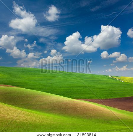 Abstract Colorful Fields and Sky Background - beautiful nature landscape,  idyllic waves of hills