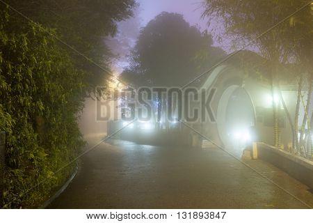 Mystery Fog in the asian park, Hong Kong, China