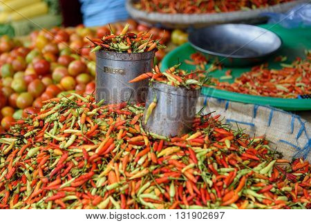 Fresh Red Chili Peppers On Tomohon Traditional Market