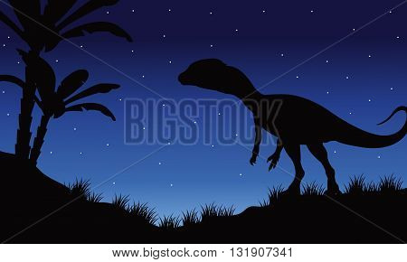 One Megapnosaurus in fields of silhouette at the night