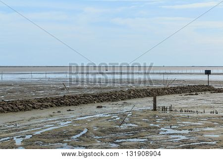 Maritime Landscape At Low Tide Water