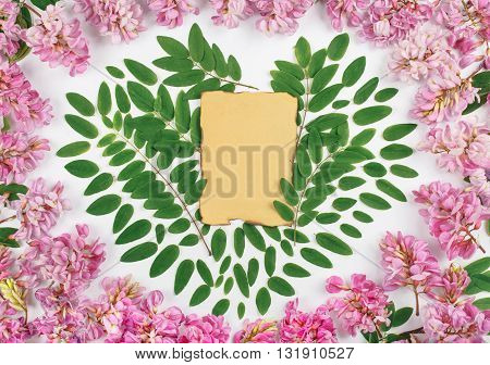 Vintage paper sheet with acacia flowers and acacia leaves in the shape of heart on white background. Top view. Flat lay